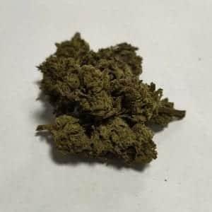 Futura 75 variété française fleurs de CBD chanvre, weed, beuh, cannabis légal