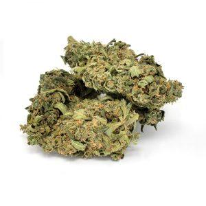 New York Diesel chanvre, weed, beuh, cannabis légal
